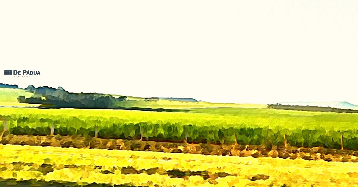 Recuperação judicial do produtor rural